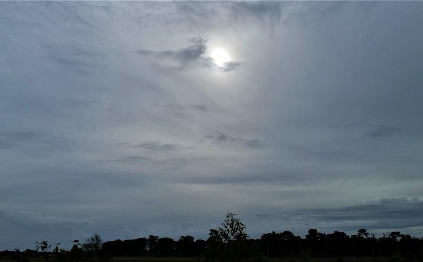 The Sun AroseAgain