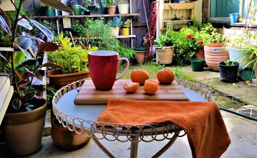 Breakfast Mandarine