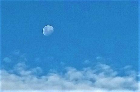 Afternoon Moonbeams
