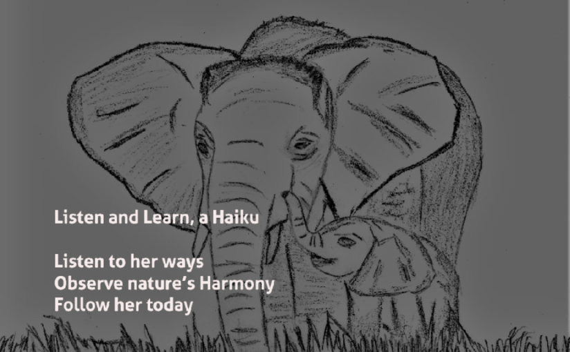 Listen and Learn, aHaiku